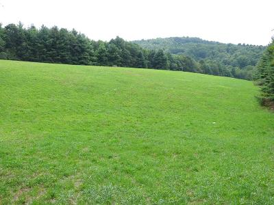 Carroll County, Grayson County Residential Lots & Land For Sale: Tbd Chantilly Dr