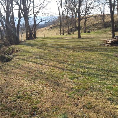 Chilhowie Residential Lots & Land For Sale: Tbd Holiday Dr
