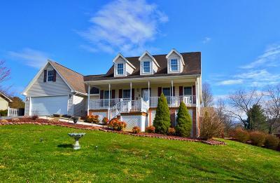 Abingdon Single Family Home For Sale: 25260 Whiteridge Drive