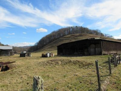 Chilhowie Residential Lots & Land For Sale: Tbd Town Springs Road