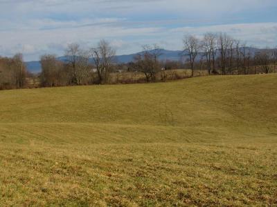 Meadowview Residential Lots & Land For Sale: Tbd Cedar Creek Rd