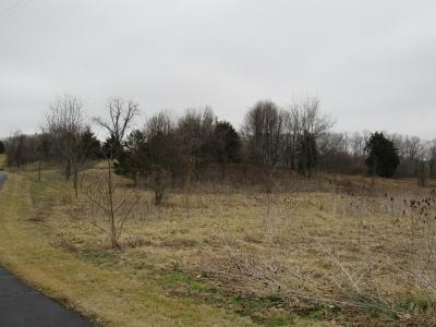 Abingdon Residential Lots & Land For Sale: Tbd Berry Creek Dr