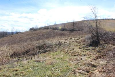Marion Residential Lots & Land For Sale: Tbd Old Ebenezer