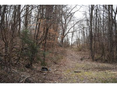 Bristol Residential Lots & Land For Sale: Tbd Wagner St