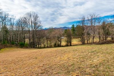 Carroll County, Grayson County Residential Lots & Land For Sale: Meadowbrook Rd