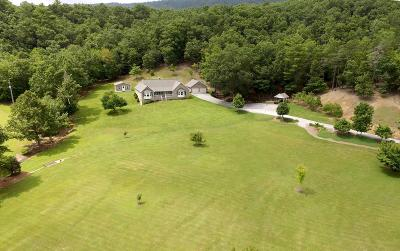 Wytheville Single Family Home For Sale: 971 Mudlick Road