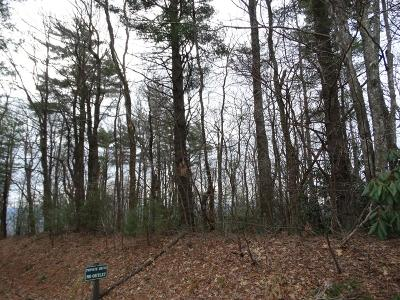 Galax, Woodlawn, Hillsville, Fries Residential Lots & Land For Sale: Tbd Buck Hollar Rd