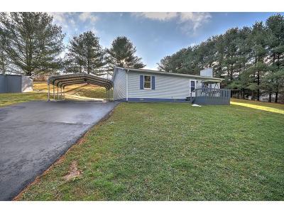 Abingdon VA Single Family Home Active Contingency: $109,900