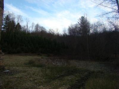 Residential Lots & Land For Sale: Jeb Stuart