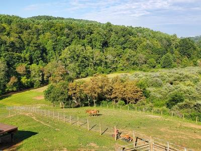Carroll County, Grayson County Residential Lots & Land For Sale: 8 Poplar Hill Road