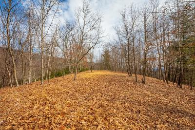 Carroll County, Grayson County Residential Lots & Land For Sale: 10.8 Ac Forest Trail