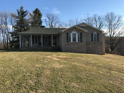 Wythe County Single Family Home For Sale: 4417 East Lee Highway