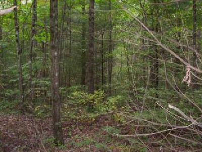 Wytheville Residential Lots & Land For Sale: Matney Flats Rd