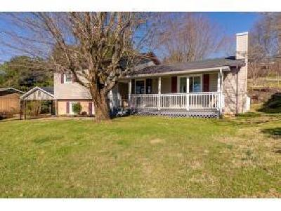Abingdon Single Family Home For Sale: 1089 Hillview Dr.