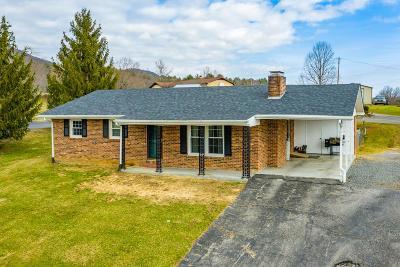 Max Meadows Single Family Home For Sale: 156 Crimson Lane