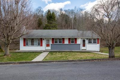 Marion Single Family Home For Sale: 331 Hulldale Ave
