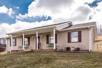 Meadowview Single Family Home For Sale: 26554 Old Saltworks Road