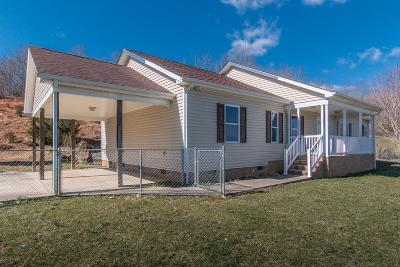 Meadowview Single Family Home For Sale: 16100 Pocahontas Trail