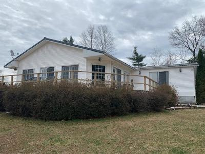 Wythe County Single Family Home For Sale: 125 Walts Lane