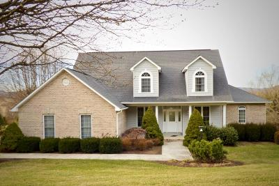 Wytheville Single Family Home For Sale: 290 Century Court