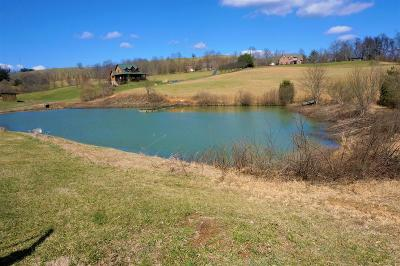 Galax, Woodlawn, Hillsville, Fries Residential Lots & Land For Sale: Tbd Sunshine Valley Ln