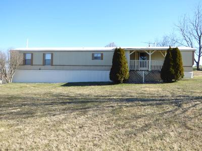 Carroll County, Grayson County Single Family Home For Sale: 180 Pleasant View Rd