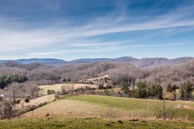 Meadowview Residential Lots & Land For Sale: 8369 Blackwell Chapel Road