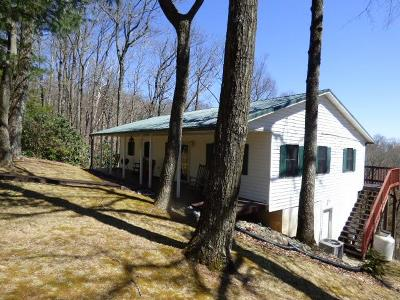 Carroll County, Grayson County Single Family Home For Sale: 327 Bavarian Way