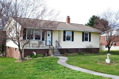 Wytheville Single Family Home For Sale: 600 Marshall Street