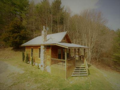 Grayson County Single Family Home For Sale: 4619 Stones Chapel Road