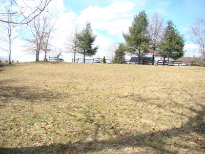 Wytheville Residential Lots & Land For Sale: Tbd S 22nd Street