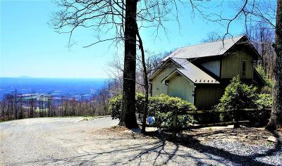 Carroll County Single Family Home For Sale: 227 Pilot Mountain Ln