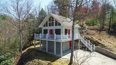 Carroll County Single Family Home For Sale: 772 Dixon Road