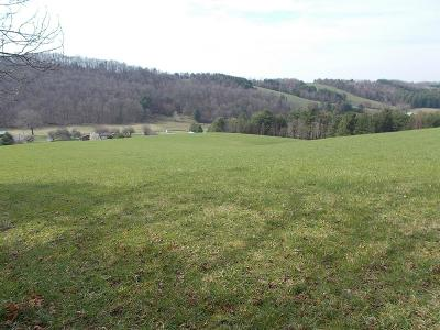 Galax Residential Lots & Land For Sale: Tbd Rainbow Circle