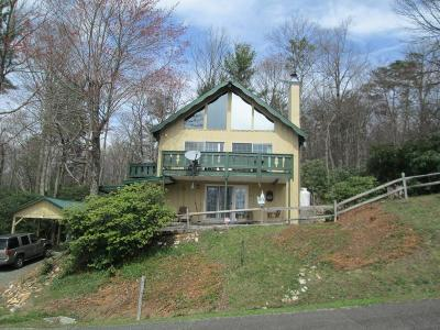 Hillsville Single Family Home For Sale: 334 Buck Hollar Rd