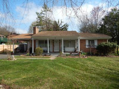 Galax Single Family Home For Sale: 506 Parkwood