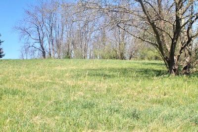Wytheville Residential Lots & Land For Sale: Tbd Carterville Heights