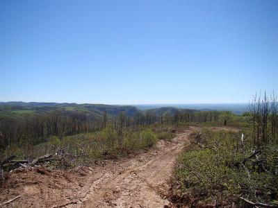 Hillsville Residential Lots & Land For Sale: Tbd Pilot View