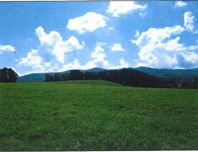 Wytheville Residential Lots & Land For Sale: Tbd East Lee Highway