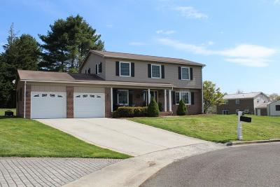 Wytheville Single Family Home For Sale: 1270 Crestview Drive