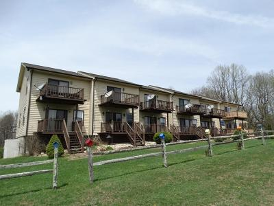 Carroll County Condo/Townhouse For Sale: 672 Evergreen Trail Unit 4