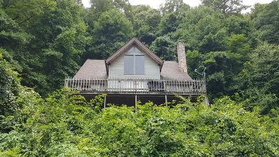 Galax Single Family Home For Sale: 463 Riverview