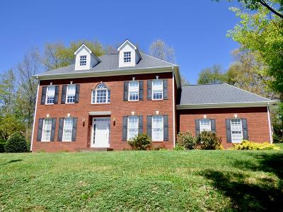 Wytheville Single Family Home For Sale: 20 Jackson Circle
