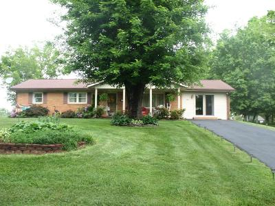 Galax Single Family Home For Sale: 588 Courtland Circle