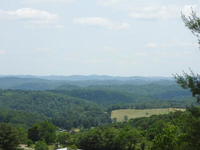 Fries VA Residential Lots & Land For Sale: $294,000