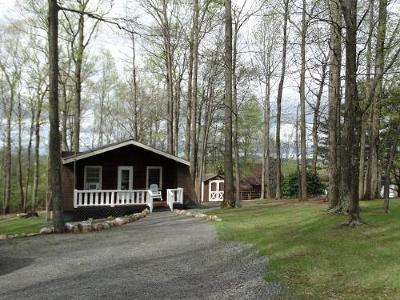 Carroll County, Grayson County Single Family Home For Sale: 50 Alpine Crest