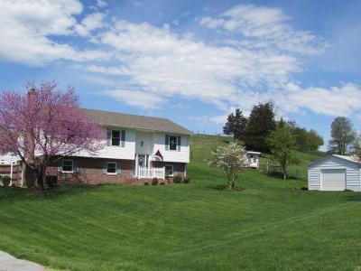 Wythe County Single Family Home For Sale: 938 Spraker Rd
