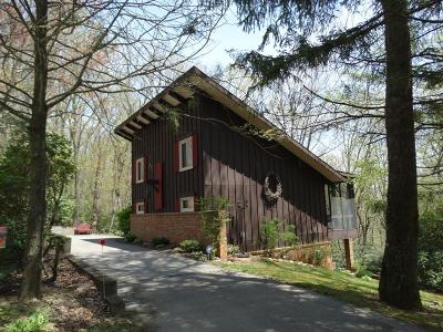 Hillsville Single Family Home For Sale: 421 Rhododendron Rd