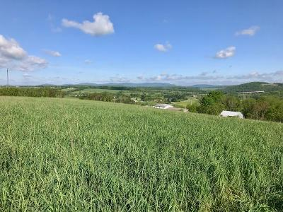 Max Meadows Residential Lots & Land For Sale: Tbd Brown Town Road
