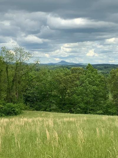 Hillsville VA Residential Lots & Land For Sale: $19,900